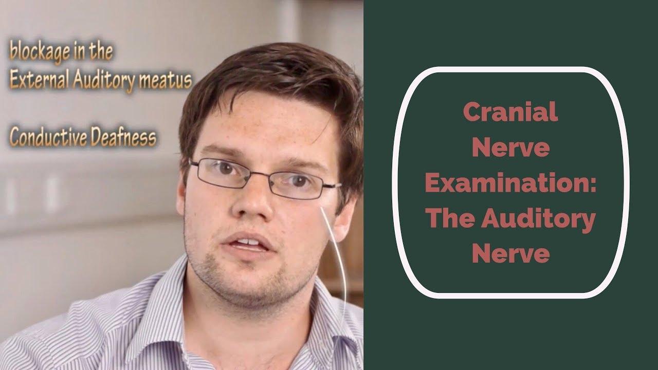 Cranial Nerve Examination Cn 8 Auditory Nerve Youtube