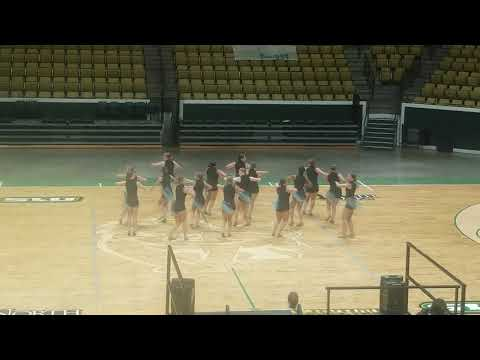 Central Lafourche High School 2018-2019 Trojanettes/Competition Team! #abirdsetfree #UDA