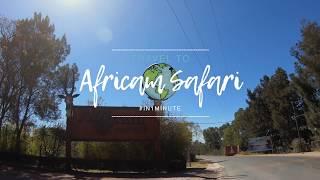 Travel to Africam Safari in1minute - Travel videos