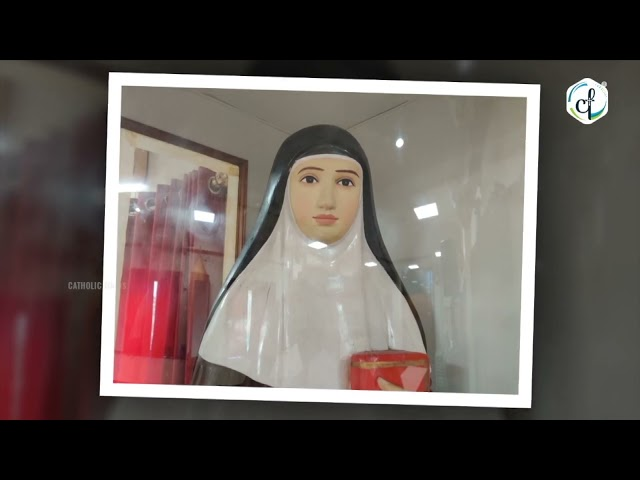 Day 06 - വി. അൽഫോൻസാമ്മയോടുള്ള നൊവേന   Catholic Focus