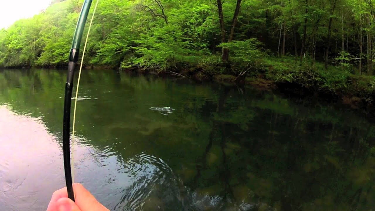 Fly fishing toccoa youtube for Fly fishing blue ridge ga
