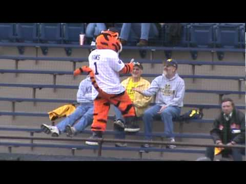 Detroit Tigers Mascot Paws With Fans In Stands At Michigan Baseball Game