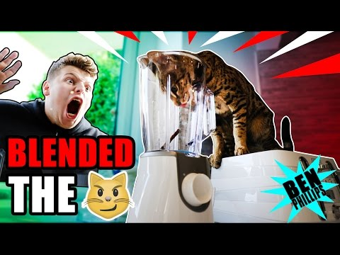 My Bro Blended My CAT! **PRANK!**