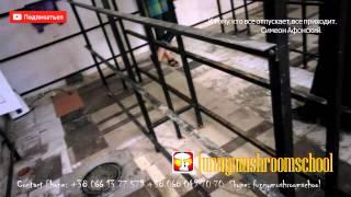 ВЕШЕНКА, РАЗБОРНЫЕ СТЕЛЛАЖИ для грибных блоков(, 2015-09-18T03:00:00.000Z)