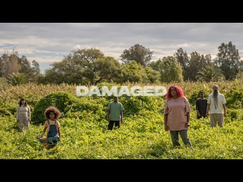 Download Miiesha - Damaged (Official Music Video)