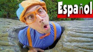 Blippi Español Aprende en el Museo de los Niños | ¡Aprend...