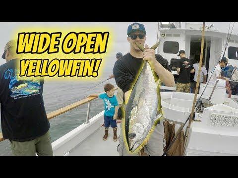 WIDE OPEN YELLOWFIN TUNA FISHING! (Limits Aboard The Pride!)