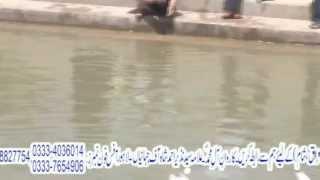 Nehr-e-Furaat