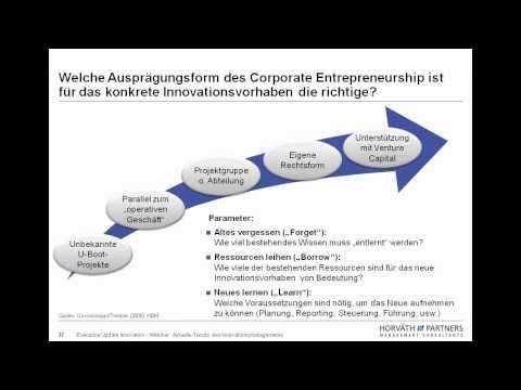 Webinar: Corporate Entrepreneurship (Aktuelle Trends des Innovationsmanagements)