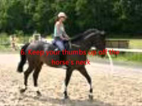 how to stop a horse when riding