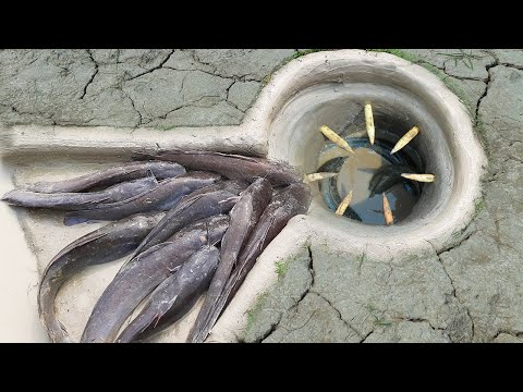 Technology Fishing Trap | Unique Fishing Trap Make From Underground Hole - That Work100%