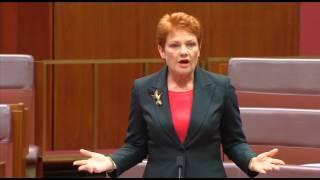 Far-Right Senator Pauline Hanson Wants Autistic Children Removed From Mainstream Classrooms  (Full)