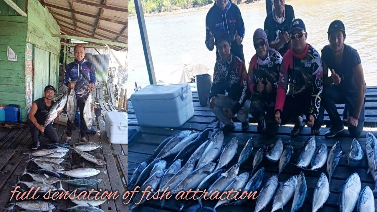Mancing Di Laut Kalimantan