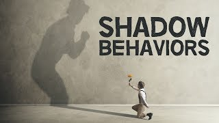 4 Examples Of Shadow Behavior | Q&A #6 | August 2019