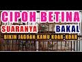 Cipoh Betina Lenjeh Vs  Sirtu Jantan Gacor  Mp3 - Mp4 Download