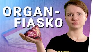 """Franziska Schreiber: """"Organspende als Zwang? Blödsinn!"""""""