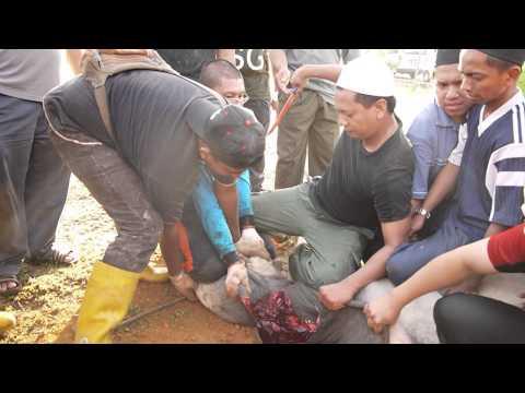 Majlis Qurban 2012 Taman Kajang Impian 3/5
