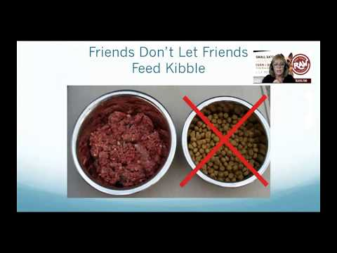 Raw Dog Food and Company - How to Start Feeding a Raw Diet for Dogs and Cats