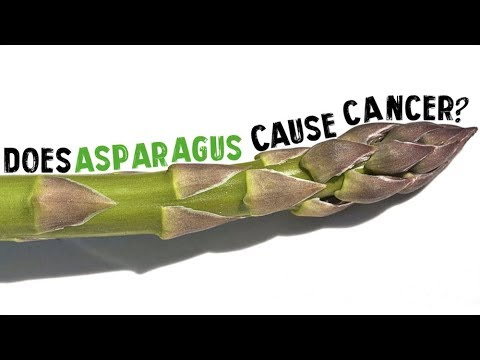 Does Asparagus Cause Cancer?