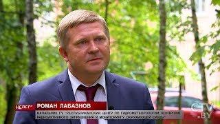 Какая погода ждёт Беларусь до конца лета?