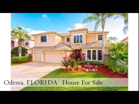 Odessa Florida Houses For Sale _ 12818 Eagles Entry Dr, Odessa, FL 33556