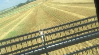 case ih 1680 start up combine wheat