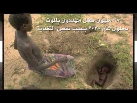 الحق قبل لايموت - المورينجا و68 مليون طفل معرضون للموت