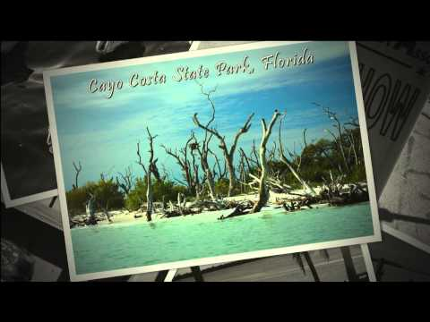 A Day on Pine Island Florida