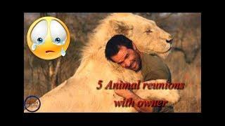 SIAPKAN TISU :'(   5 Momen mengharukan binatang binatang bertemu pemiliknya dulu  - ANIMAL REUNIONS
