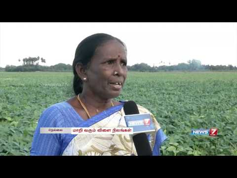 Farm lands fast turning into concrete jungles in Tirunelveli