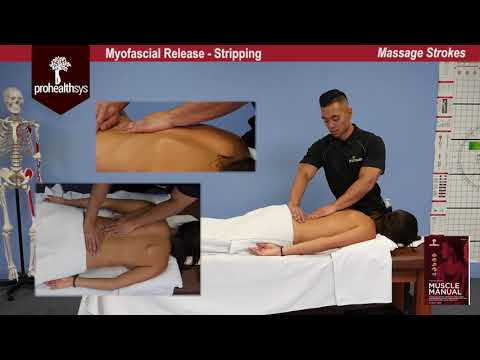 Awesome Massage   Myofascial Release Vizniak