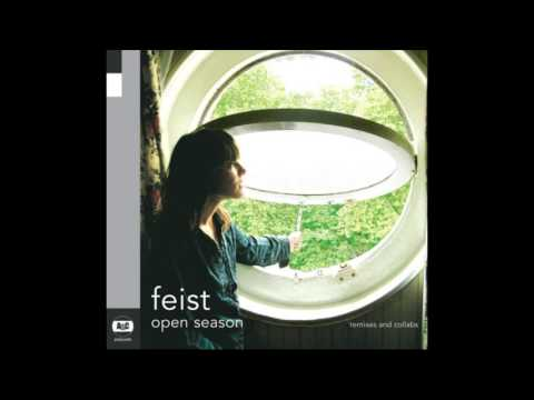 Feist - One Evening - Gonzales Solo Piano