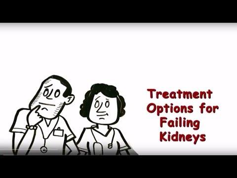 Treatment Options for Failing Kidneys