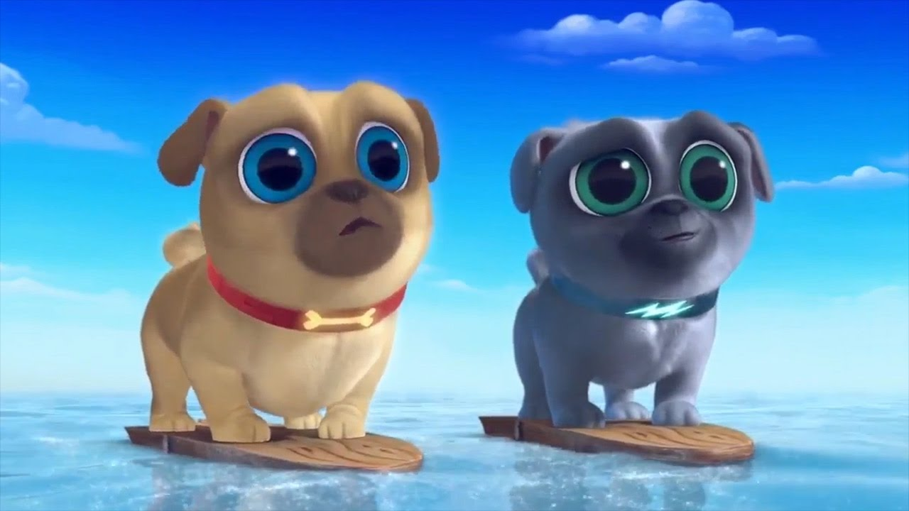 Puppy Dog Pals Bingo And Rolly Going Surfing Puppy Dog Pals Show