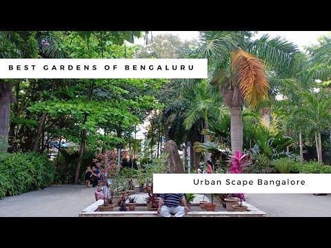 The best small garden in Bengaluru/Bangalore