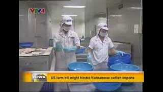 US farm bill might hinder Vietnamese catfish imports - Source VTV4