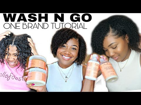 Wash N Go Hair Care Routine | Shea Moisture Coconut Hibiscus Brand Only Tutorial thumbnail