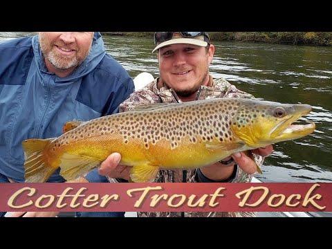 October 21, 2020 Arkansas White River Trout Fishing Report