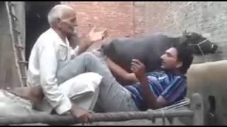 Pakistan sexy video