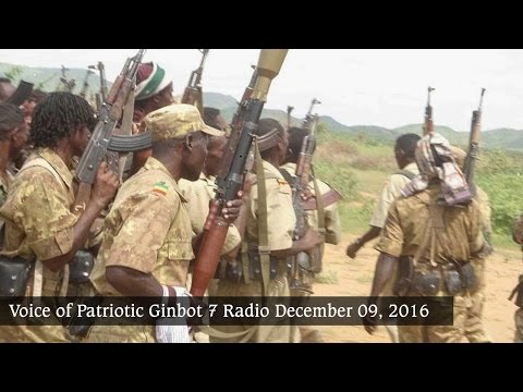 Voice of Patriotic Ginbot 7 Radio Broadcasts to Ethiopia December 09, 2016