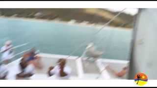 Tropical Adventures - Mystic Catamaran Cruises Antigua