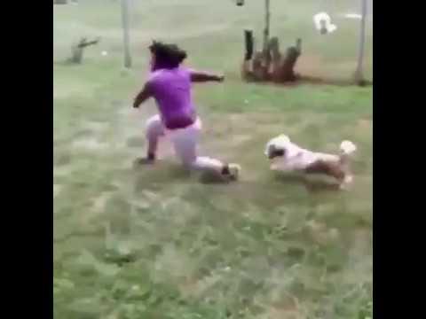 Video Lucu, gokil, dan bikin ngakak anak kecil dikejar anjing