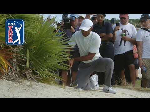 Tiger Woods' shot from the bushes at Hero World Challenge 2018