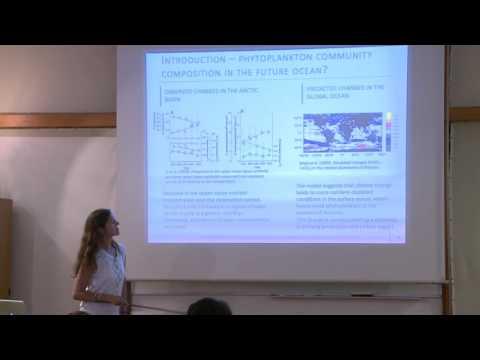 19 Julia Uitz   Satellite Ocean Color Retrieval of Phytoplankton Functional Types in the Open Ocean