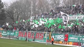 Support - BSG Chemie Leipzig - Chemnitzer FC Teil II