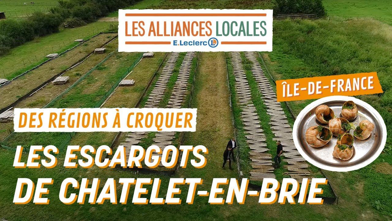 Des Régions à Croquer avec les Alliances Locales E.Leclerc