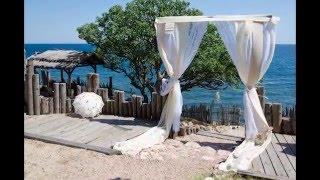 Оформление свадьбы в разном цвете, варианты  свадебного декора