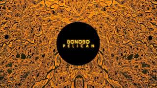 Bonobo : Pelican