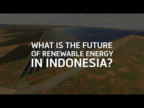What is the future of renewable energy in Indonesia?