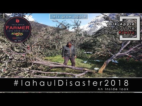 Lets Grow Apple | Lahaul Disaster 2018 - An inside Look | #lahauldisaster2018